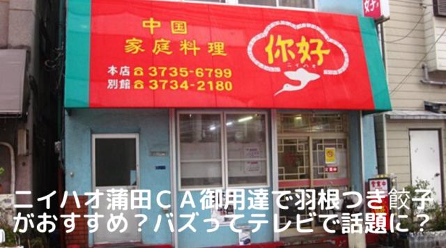 ニイハオ蒲田はCA御用達の羽根つき餃子がおすすめの町中華?バズってるあの場所掘ってみたで話題に?